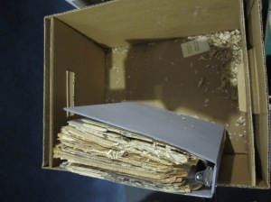 Box with shredded newspaper in corner